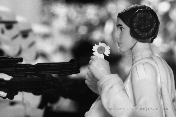 Flower Child, Death Star Protest