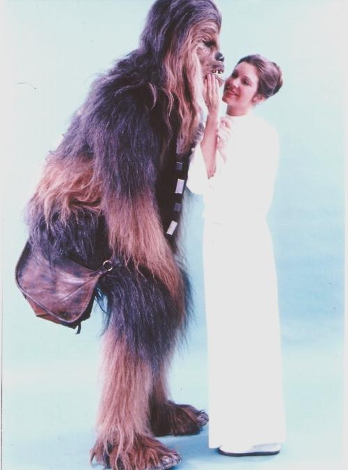 chewbacca-leia